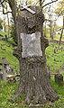 Cmentarz na Rossie 2007 4.jpg