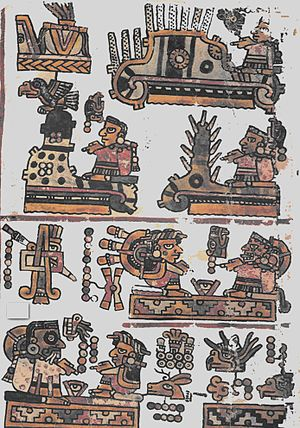 Mixtec - The preconquest Codex Bodley, page 21, names Lord Eight Grass as being the last king of Tiaxiaco.
