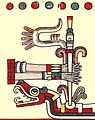 Codex Laud p.41 detail Use of the Amamalocotl.jpg