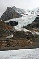 Columbia Icefields (349052870).jpg