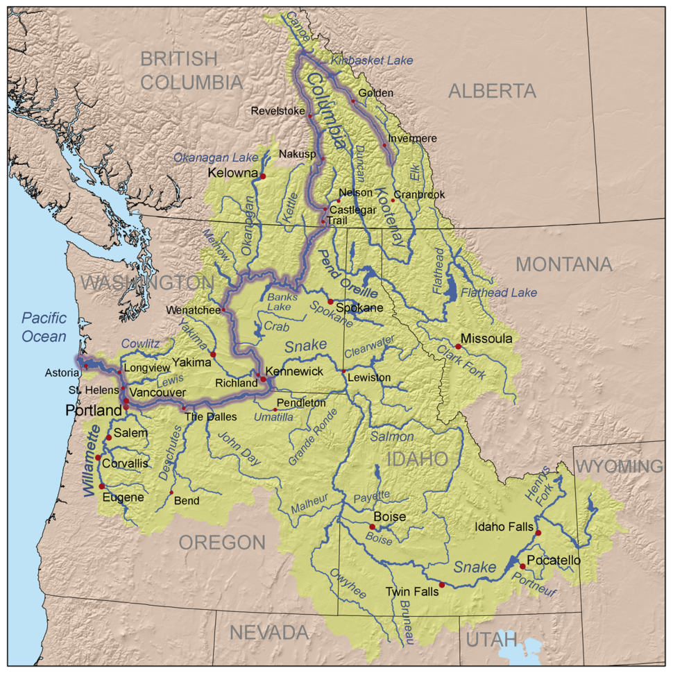 Three-color map of the Columbia River watershed. The watershed is shaped roughly like a funnel with its wide end to the east and its narrow end along the border between Washington and Oregon as it nears the Pacific Ocean. The watershed extends into the western US states of Washington, Oregon, Idaho, Nevada, Utah, Wyoming, and Montana, and the western Canadian province of British Columbia as far east as its border with Alberta. The river itself makes a hairpin turn from north-west to south in British Columbia and another sharp turn from south to west as it nears Oregon.