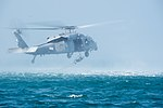 Commander, Task Group 56.1 explosive ordnance disposal technicians conduct Helicopter Cast and Recovery 141209-N-MF909-150.jpg