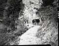 Completed paving of West Rim Trail near shelter cabin and the return of Lameraux's horses. ; ZION Museum and Archives Image 008 (91d49845c271486ea5b6e99a7436d158).jpg