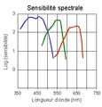 Courbes Sensibilité-Spectrale FilmNégatif.png