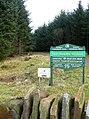 Craig Wen woodland - geograph.org.uk - 654777.jpg