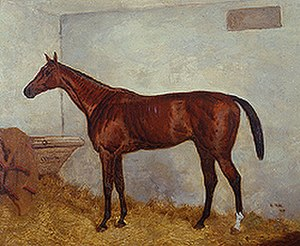 Cremorne (horse) - Cremorne in 1872. Painting by Harry Hall