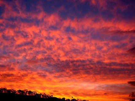 Sunsets and sunrises are often red because of an optical effect called Rayleigh scattering. Crimson sunset.jpg