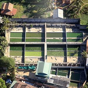 Crocodile farm - Aerial view of a Cambodian crocodile farm