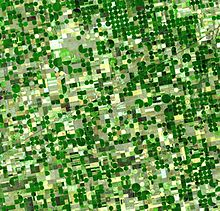 Image satellite de cultures au Kansas