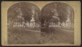 Crosbyside House, Lake George, by Stoddard, Seneca Ray, 1844-1917 , 1844-1917.png