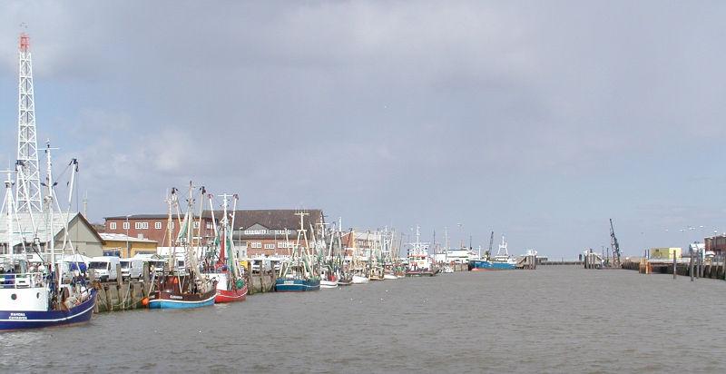 File:Cuxhaven fischerreihafen.jpg