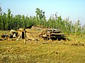 Cyclone Aila Climate Change Nijhum Dwip 2009 Dec Bangladesh.jpg