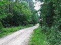 Czarna Bialostocka - Linia LKW.jpg