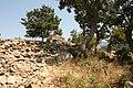 Düzorman kalesi - panoramio.jpg