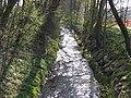 D-BW-Kressbronn aB - Nonnenbach am Schnakenweg.JPG