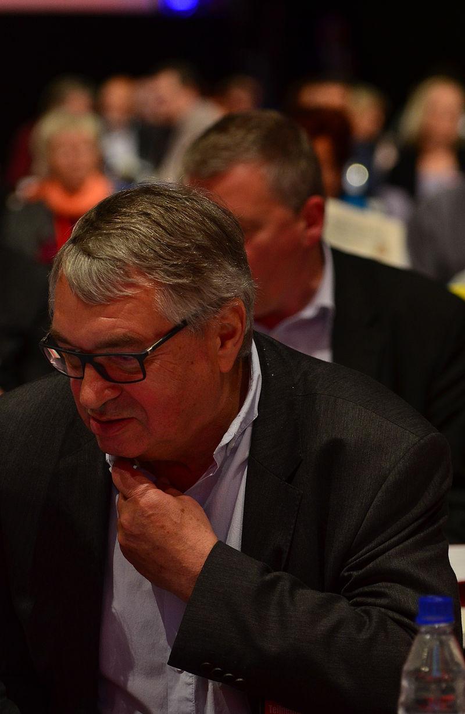 DIE LINKE Bundesparteitag 10. Mai 2014-22.jpg