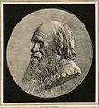 Darwin, Charles (1809-1882) CIPA0697.jpg