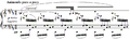 Debussy - Etude VIII, mes.33.PNG