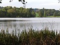 Deer Park Mere, Cholmondeley castle grounds - geograph.org.uk - 255856.jpg