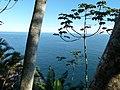Descortinando a mata, Ilha Bela - panoramio.jpg