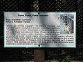 Descriptions of animals in the Silesian Zoological Garden n 04.JPG