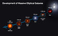 Development of massive elliptical galaxies.jpg