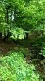 Dilijan National Park, Path way to Aghavnavank 01.jpg