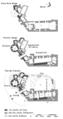 Dirleton Plan all floors(fr).png