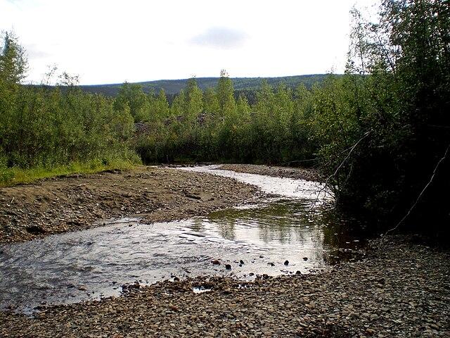 Bonanza Creek