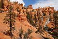 Dixie National Forrest, Utah (3446223505).jpg