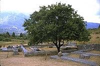 Remains of the sanctuary of Zeus Dodonaios in Dodona