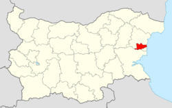 DolniChiflik Municipality Within Bulgaria.png