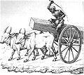 Douglas Hamilton, Alan, plate 7, Ox Cart.jpg