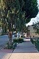 Downtown Whittier, Greenleaf Ave, west side of street.jpg