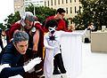 Dragon Con 2013 - Avengers (9676965330).jpg