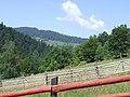 Durău 617130, Romania - panoramio (2).jpg