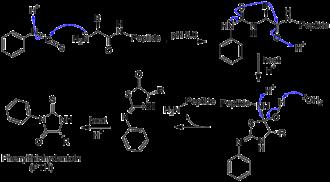 Edman degradation - Edman Degradation with generic amino acid peptide chain.