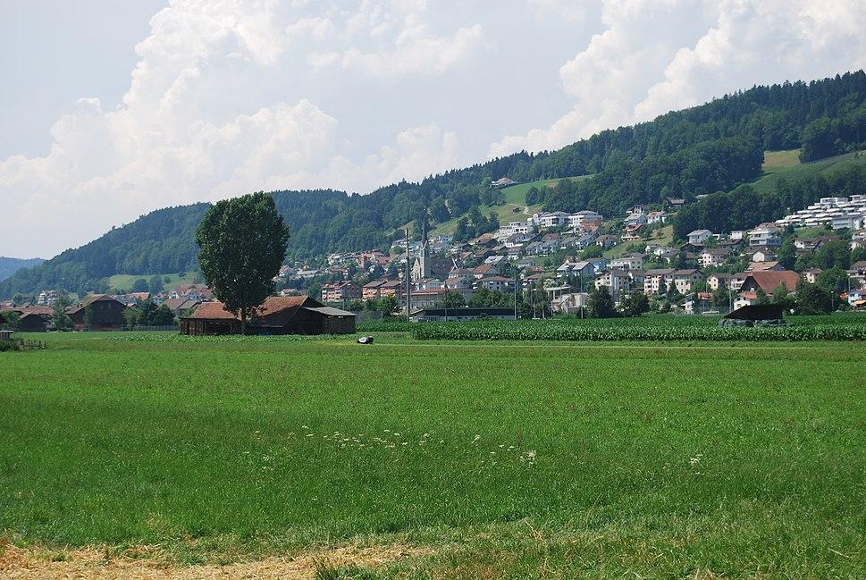 Skyline of Egolzwil