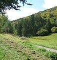 Ein Tal bei Esthal - panoramio.jpg