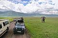 Elephant and tourists at Ngorongoro Crater.jpg