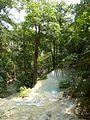 Erawan Waterfall Level 7 P1110201.JPG