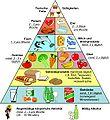 Ernährungs Pyramide.jpg