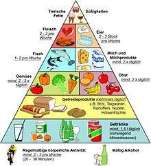 Ernährungspyramide nach den empfehlungen des dge (nach 1992, aktuell