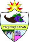 Official seal of Tequisquiapan