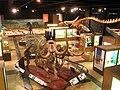 Exhibit Museum of Natural History, Ann Arbor - IMG 9055.JPG