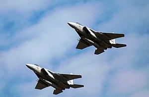 304th Tactical Fighter Squadron (JASDF) - 304 Squadron Mitsubishi F-15s (2008)