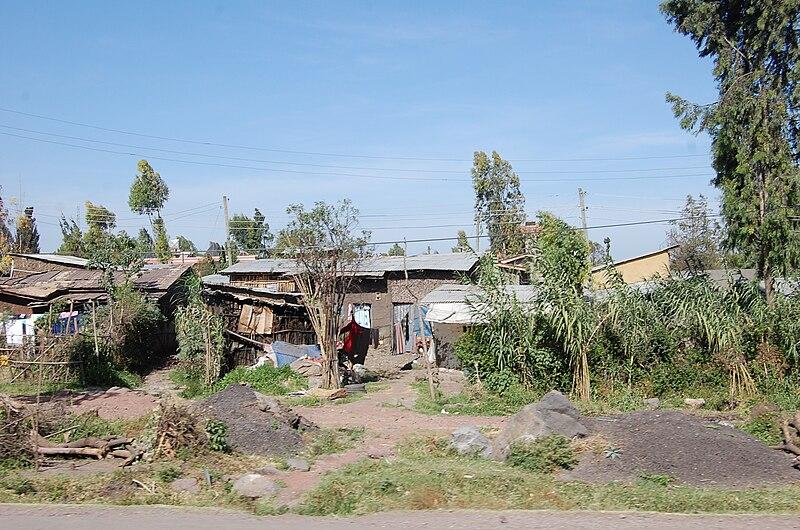 File:FMSC Staff Trip 2011 - Ethiopian Houses (6385295247).jpg