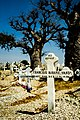Fadiouth Grave (16169347679).jpg