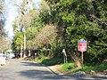 Fair Oaks, CA bluffs 996 - panoramio.jpg