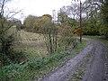 Farm track at Wyke - geograph.org.uk - 689402.jpg